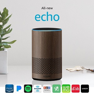 Echo Dot wifi radio