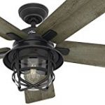 Ceiling fan with lighting