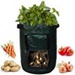 potato bucket